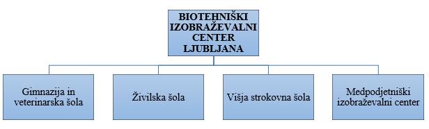 BIC_Organizacijska struktura